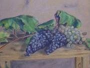L'uva raccolta