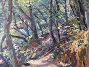 bosco - San Gerbone
